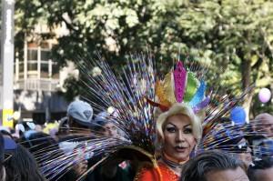 Parada plumas