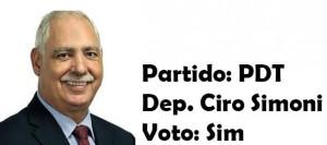 Ciro Simoni - PDT- Sim