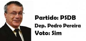 Pedro Pereira - PSDB