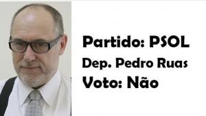 Pedro Ruas -Psol