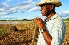 Agricultor triste