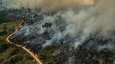 Fumaça na Amazônia