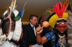Indígenas e Bozo