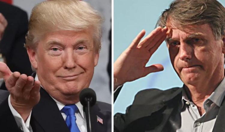 Trump e Bozo (2)