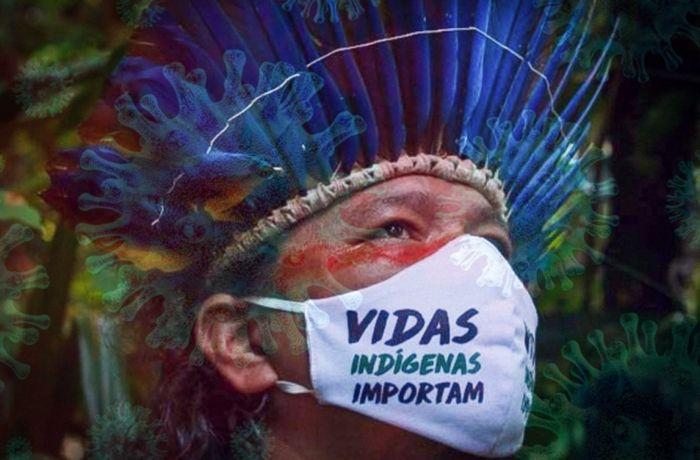 Vidas Indígenas