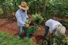 agricultura familiar4